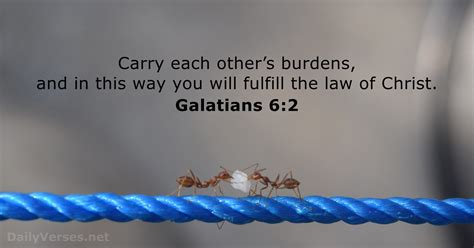 Galatians 6:2 - Bible verse of the day - DailyVerses