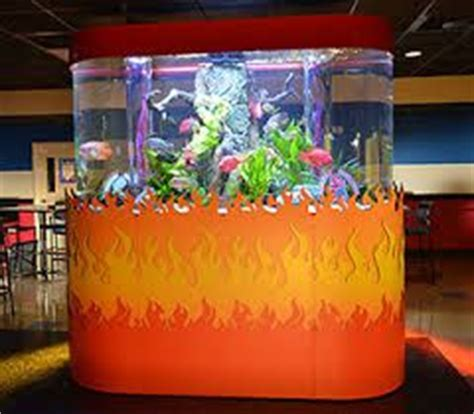17 Best images about Fish Tanks on Pinterest | Fish