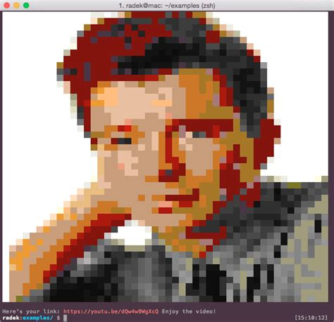 Printing images in the terminal with 9 lines of Ruby (by
