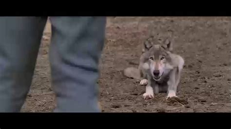 John Barry - Two Socks, The Wolf Theme (Dances With Wolves