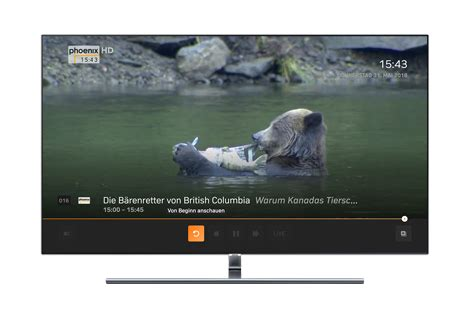 Zattoo Live TV: television on all Internet-enabled devices